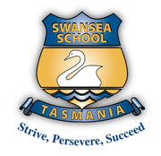 Swansea Primary School
